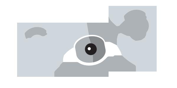 drone-drawing-web2